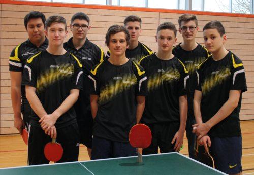 """Tischtennis-Regionalentscheid des Wettbewerbs """"Jugend trainiert für Olympia"""" 2014"""