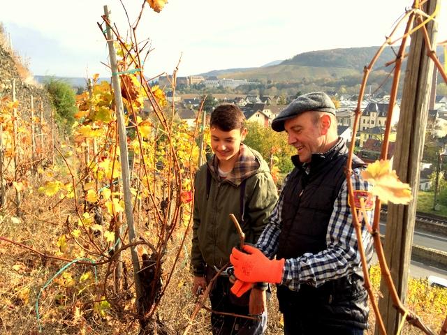 Moritz aus der Klasse 9d erhielt in seinem Praktikum als Winzer Tipps von Hubert Pauly, dem Präsidenten des Weinbauverbandes Ahr, wie die Reben zu beschneiden sind